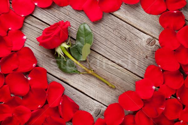 Rosa vermelha pétalas coração flor mesa de madeira topo Foto stock © karandaev