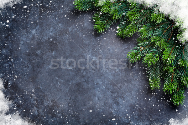 Christmas fir tree and snow Stock photo © karandaev