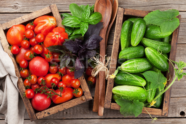 Fresh garden tomatoes and cucumbers Stock photo © karandaev