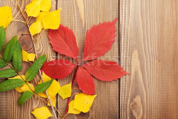 Stockfoto: Hout · kleurrijk · exemplaar · ruimte · textuur · natuur