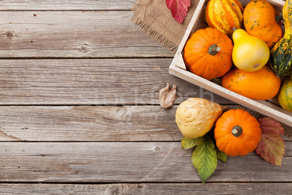 Autumn pumpkins on wooden board table Stock photo © karandaev