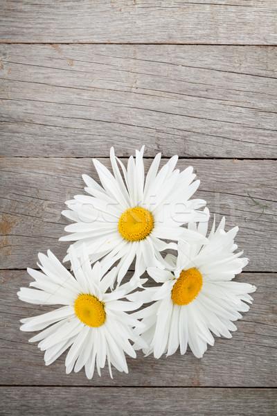 Daisy ромашка цветы деревянный стол копия пространства фон Сток-фото © karandaev