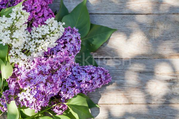 красочный сирень цветы саду таблице Top Сток-фото © karandaev