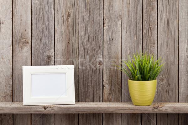 Blank photo frame and plant Stock photo © karandaev