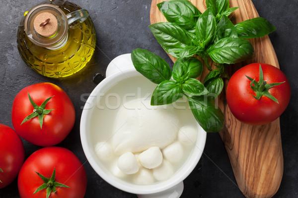 Mozzarella sajt paradicsom bazsalikom paradicsomok gyógynövény Stock fotó © karandaev