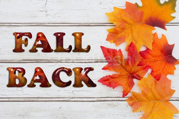 Fall Back Stock photo © karenr