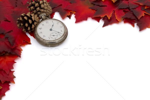 Autumn Time Background Stock photo © karenr