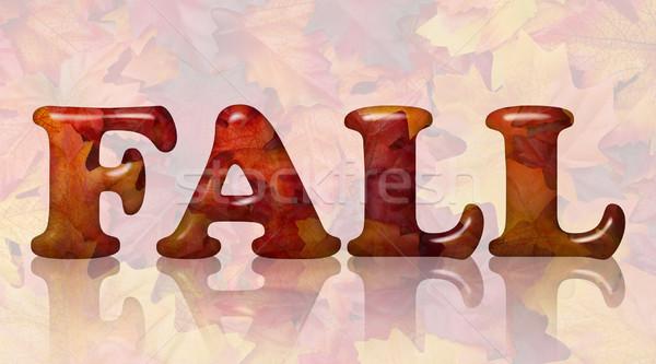 Vallen bladeren woord 3D brieven oranje Stockfoto © karenr