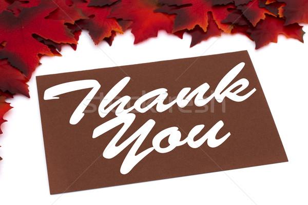 Otono tiempo rojo hojas de otoño tarjeta Foto stock © karenr
