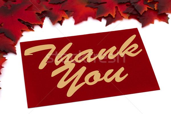 Outono tempo obrigado vermelho cartão Foto stock © karenr