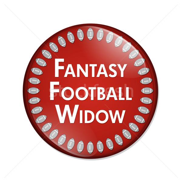 Fantasy Football Widow Button Stock photo © karenr