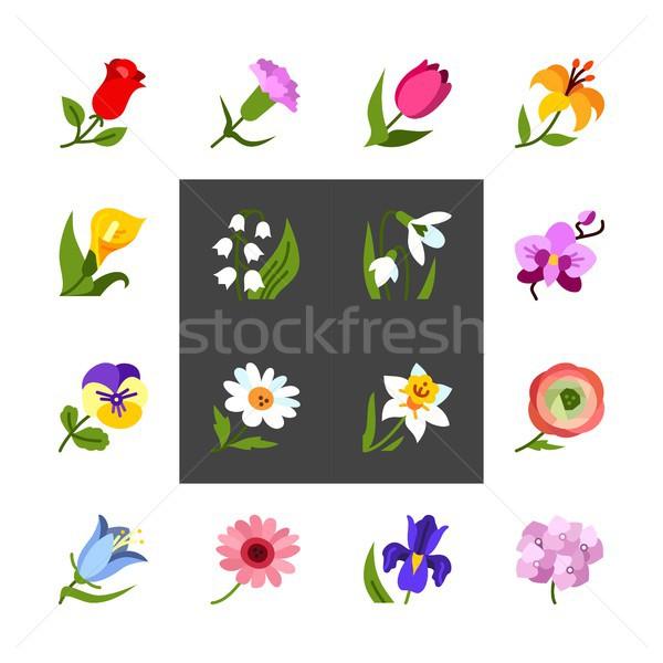 цветы красочный вектора шаблон иконки Сток-фото © karetniy