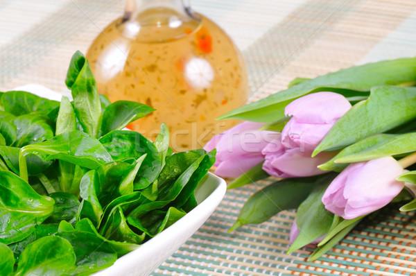 Maïs salade herbe pansement vert tulipe Photo stock © karin59