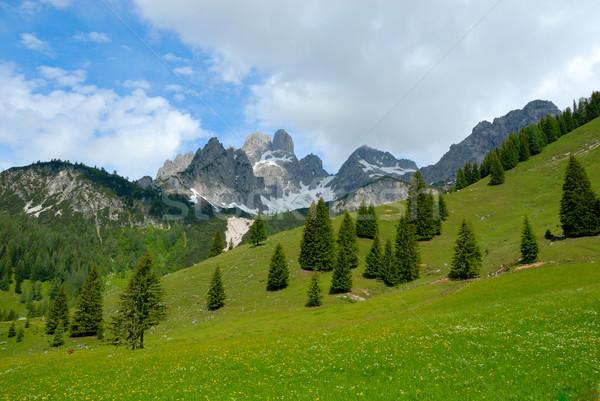 Alpes montagnes paysage neige montagne été Photo stock © karin59