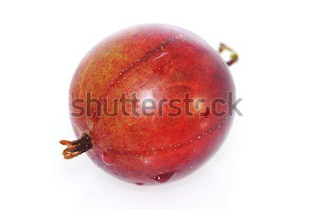 Rouge fruits jardin manger sweet saine Photo stock © karin59