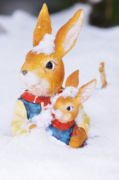 Easter bunnys Stock photo © karin59