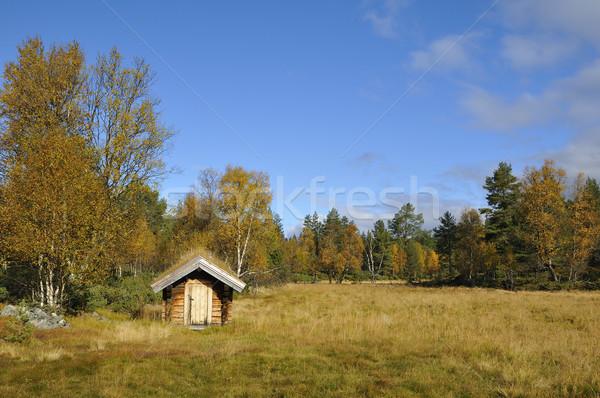 Svédország magányos kunyhó ősz tájkép hegy Stock fotó © karin59