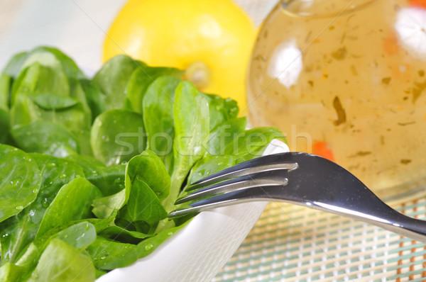 Maïs salade herbe pansement santé vert Photo stock © karin59