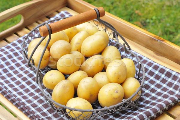 Brut pommes de terre fraîches panier bois santé Photo stock © karin59