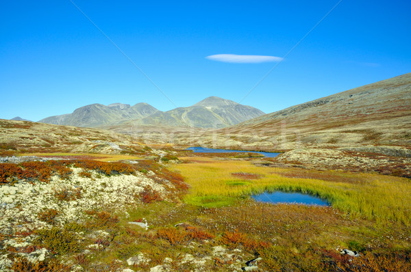 Rondane Nationalpark Stock photo © karin59