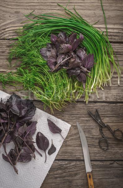 Garden fresh herbs basil, dill on the wooden table Stock photo © Karpenkovdenis