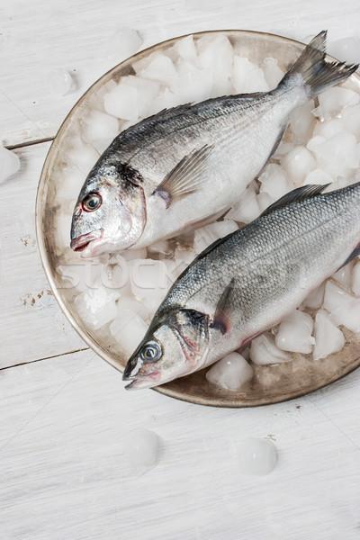 Balık deniz bas Metal plaka buz Stok fotoğraf © Karpenkovdenis