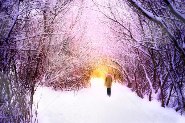 女性 徒歩 冬 森林 水平な 空 ストックフォト © Karpenkovdenis