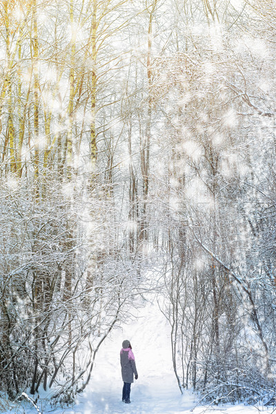 Woman walking in the winter forest Stock photo © Karpenkovdenis