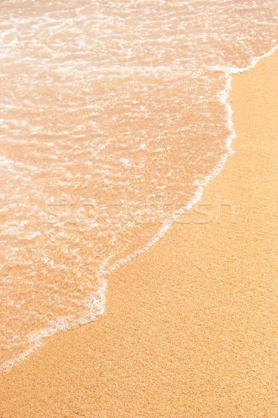 砂 ビーチ 海 波 垂直 自然 ストックフォト © Karpenkovdenis