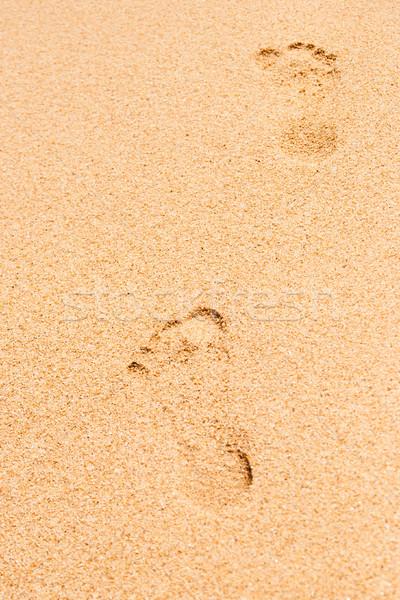 следов песок вертикальный пляж природы морем Сток-фото © Karpenkovdenis