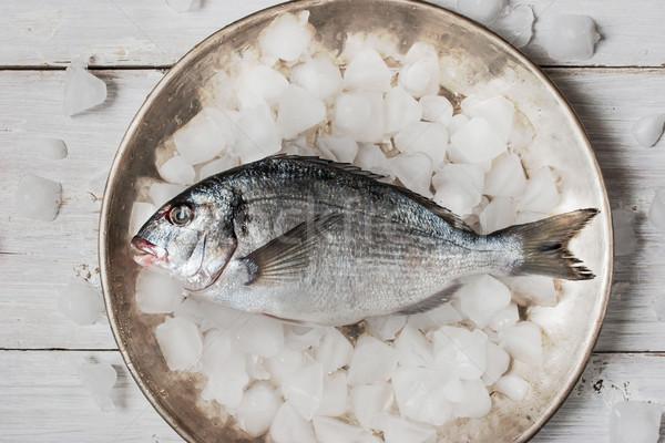 Dorado fish on the metal plate with ice Stock photo © Karpenkovdenis