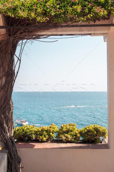 Zee terras venster boom natuur Stockfoto © Karpenkovdenis