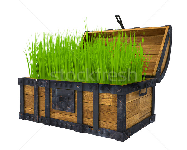 old chest filled with green grass Stock photo © kash76