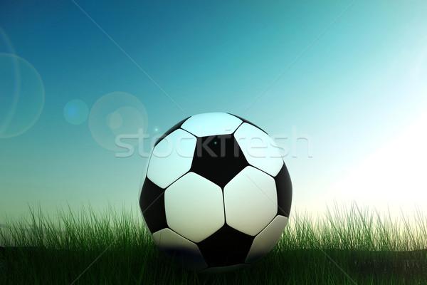 Futballabda fű 3D kép futball mező Stock fotó © kash76