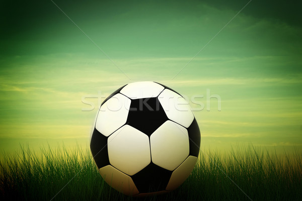 soccer ball in grass Stock photo © kash76