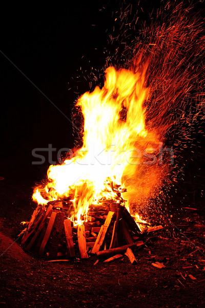 big campfire Stock photo © kash76