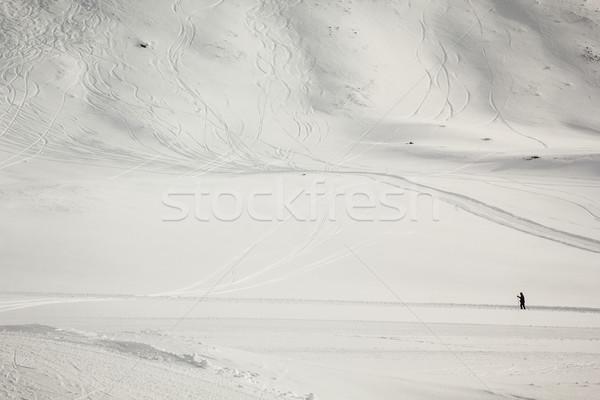 Cross-country skier  Stock photo © kasjato