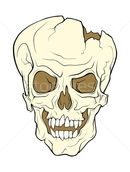 The skull of a grinning vampire.   Stock photo © katya_sorokopudo