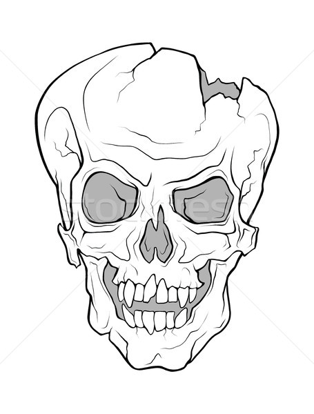 The skull of a grinning vampire. Vector monochrome illustration. Stock photo © katya_sorokopudo