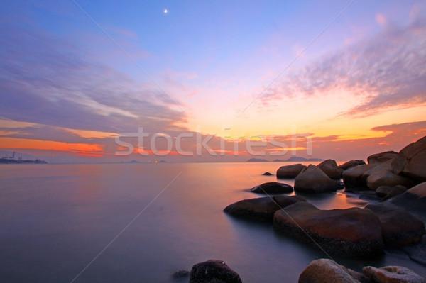 Zonsondergang oceaan natuur lange blootstelling boom landschap Stockfoto © kawing921