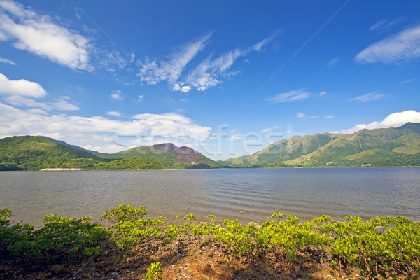 Morza wybrzeża krajobraz Hongkong drzewo trawy Zdjęcia stock © kawing921