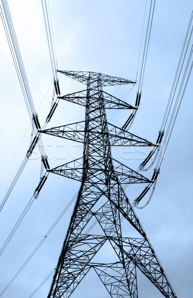 Electric tower and cables Stock photo © kawing921