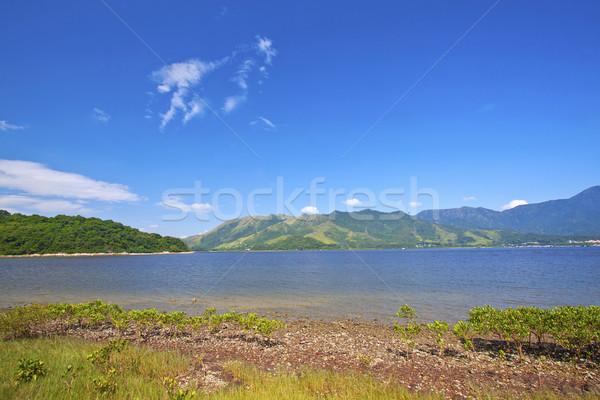 Coastal landscape in Hong Kong Geo Park Stock photo © kawing921