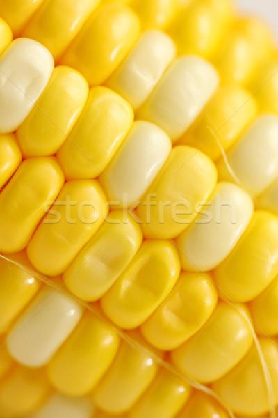 Milho comida abstrato fundo verão Foto stock © kawing921
