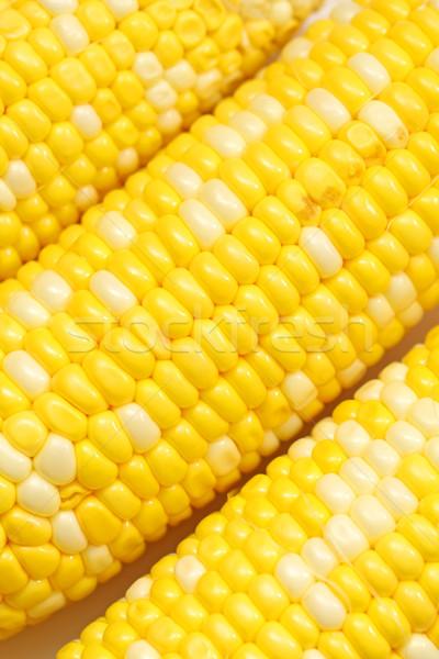 Corn close-up. Stock photo © kawing921