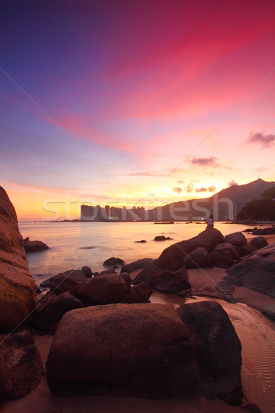 Puesta de sol mar piedras la exposición a largo árbol fondo Foto stock © kawing921
