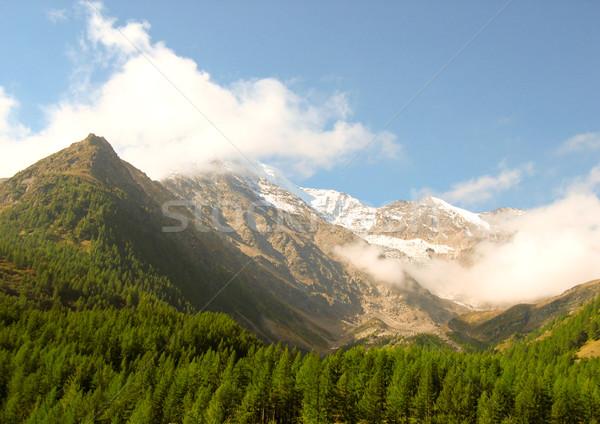 Сток-фото: горные · Top · снега · облака · деревья