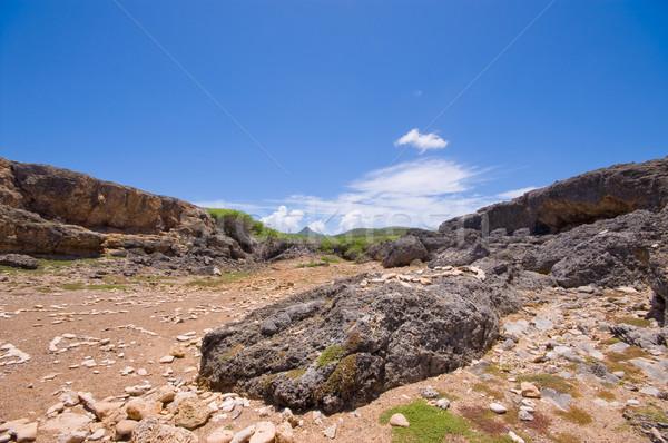 берега парка мнение горные небе Сток-фото © kaycee