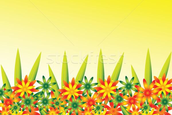 цветок границе полный красочный красный зеленый Сток-фото © kaycee