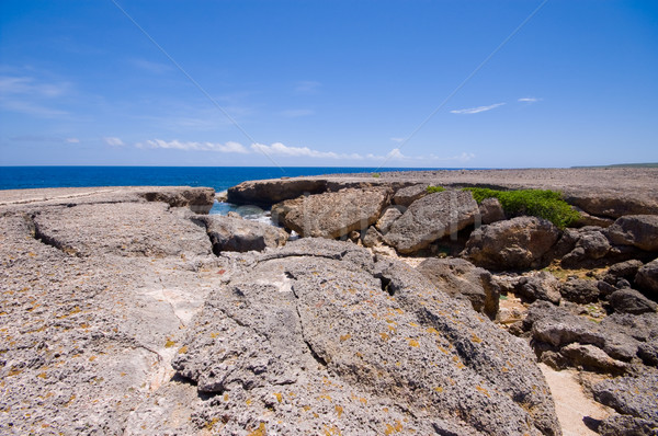 rocky shore with natural bridge collapsed Stock photo © kaycee